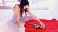 ZiaFox and turtle